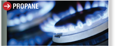 Ac Amp Wholesale And Retail Petroleum Products
